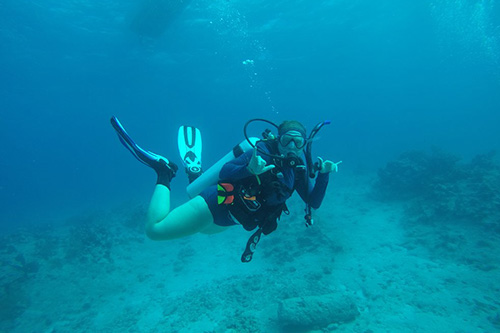 Recent graduate Abby Knipp studies corals in the ocean.