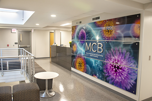 MCB Learning Center sign