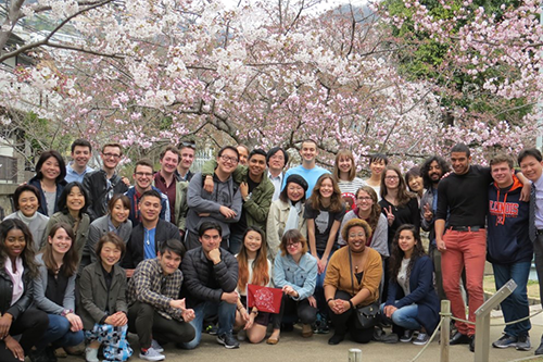 A large group of Illinois students pose in front of trees full of cherry blossoms in Japan