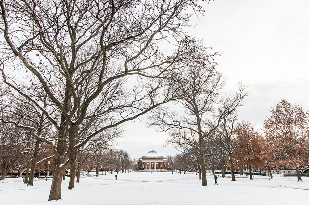 Several College of LAS faculty have been named Professorial Scholars this fall and winter.