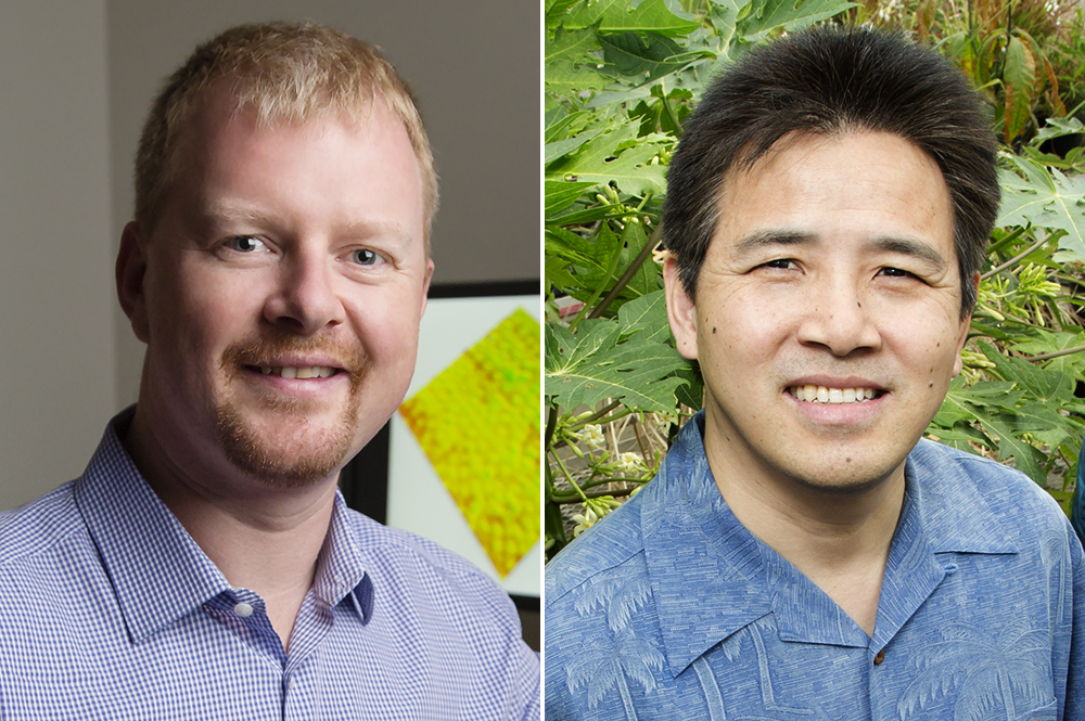 From left, Andrew Leakey and Ray Ming are among 416 scientists elected AAAS Fellows this year.