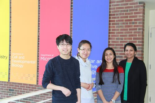 From left: Graduate students Yo-Chuen Lin and Rosaline Hsu, Mariam Komal Harif, and professor Supriya Prasanth.
